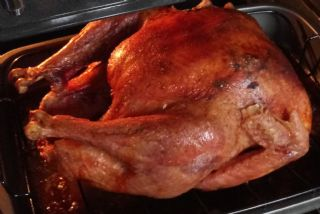 Roasted Turkey image