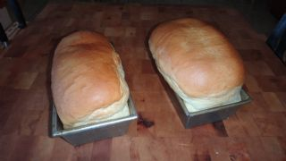 White Bread Plus Recipe courtesy Joy of Cooking image