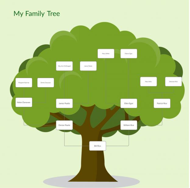 Free Family Tree Tool